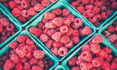 berry-bucket-close-up-396143